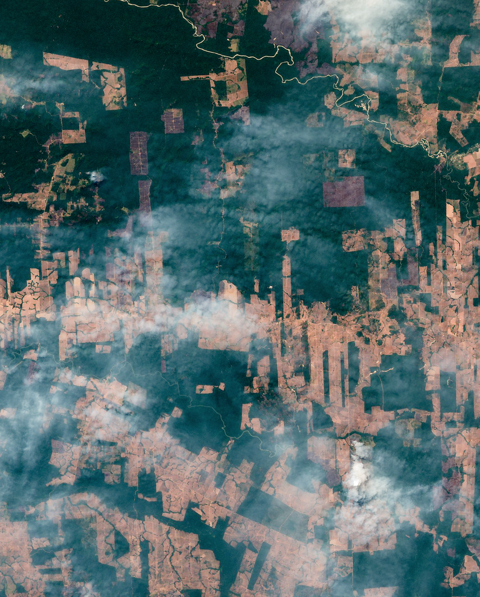 High resolution satellite image of slash-and-burn fires and smoke clouds in the Amazon rain forest in August 2019, Amazon basin, Mato Grosso, Brazil, contains modified Copernicus Sentinel data [2019]