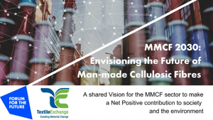 Man-made Cellulosic Fibres (MMCF) 2030 Vision