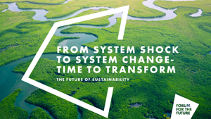 Future of Sustainability report: From system shock to system change - time to transform